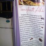 Origin and Health Benefits of Tongkat Ali