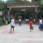 Manila Zoo Entrance Fee for 2014 Has Increased