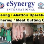 Tesda Butchery / Slaughthering Training Schools, Philippines 2016