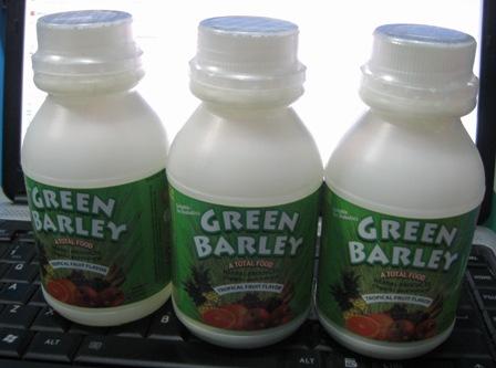 green barley philippines