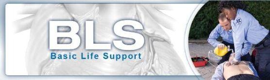 basic life support training bls - aha