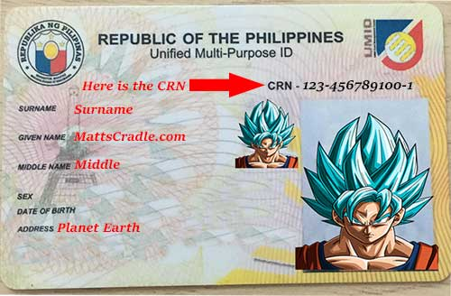 UMID card Philippines sample