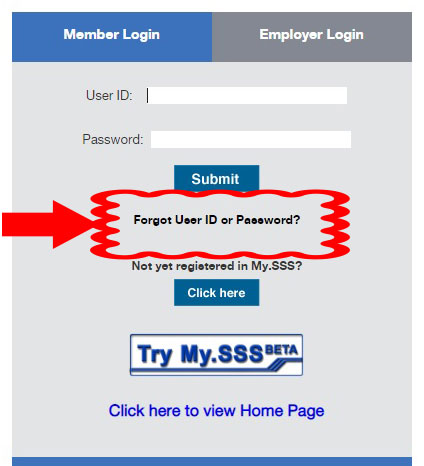 how to reset sss password online