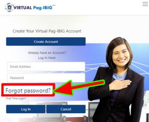 pag-ibig-password-reset-page-login-2