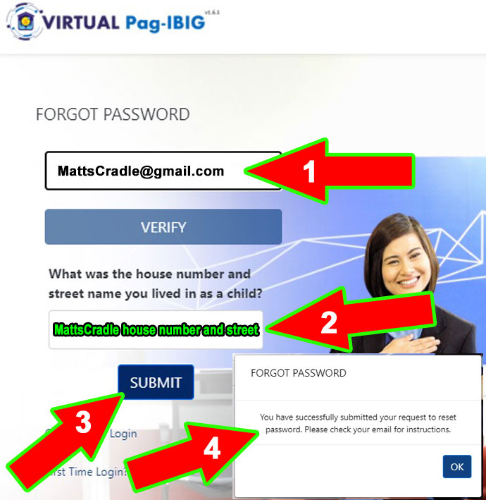 virtual-pag-ibig-password-reset-forgot-step-three-v3