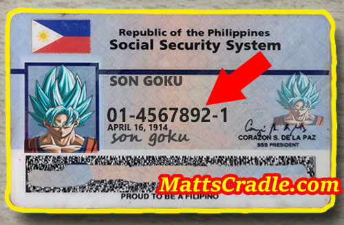 sss id number sample