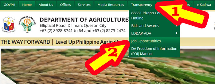 department of agriculture jobs