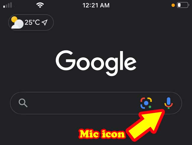 step-2-run-the-browser-mic-icon
